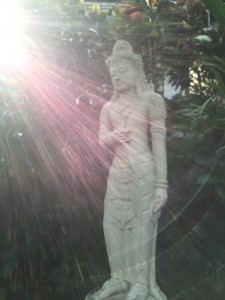 光の中のブッダ